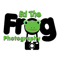 Ed The Frog Photography