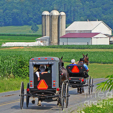 Amish in Pennsylvania  Collection