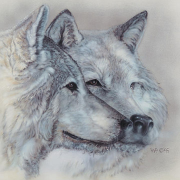 Animals- Wolves and Minnesota Trees Collection