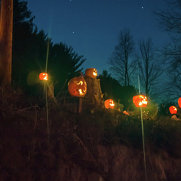 Cilley Hill Pumpkin Glow Collection
