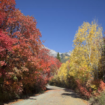 Rocky Mountain Fall Collection