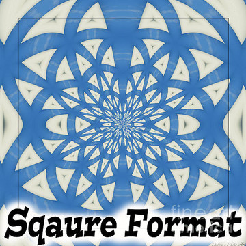 Square Format Collection