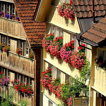 Switzerland Collection