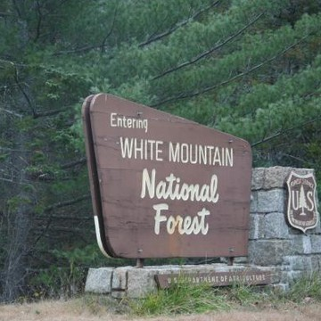 White Mountains Collection