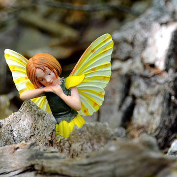 Woodland Fairies Collection