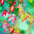 Bright Watercolor Leaves