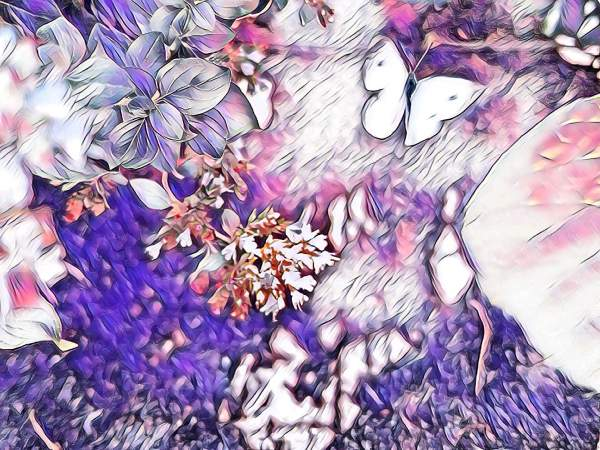 Butterflies and Moths in Digital Art
