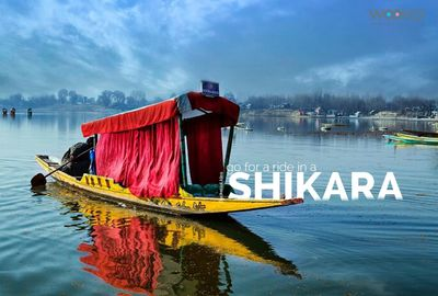 Putlockershd Shikara Movie 2020 Watch Online Full...