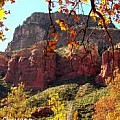 Arizona Images - For Sale