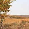 Canadian Prairie Provinces   Alberta Saskatchewan and Manitoba