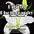Digital Photography Group - 1 Per Day