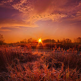 Phil Koch - To See and Feel Forever