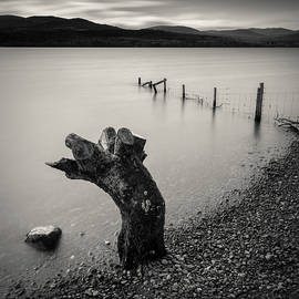 Limbless on Loch Rannoch by Dave Bowman