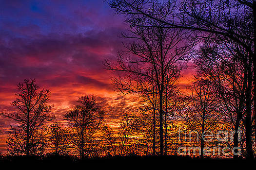 Debra K Roberts - Fire In The Sky