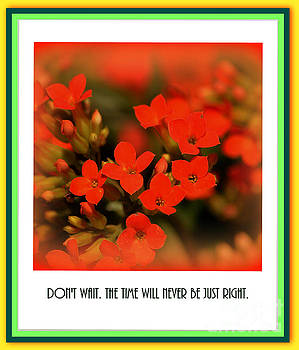 Susanne Van Hulst - Flower and Time Quote