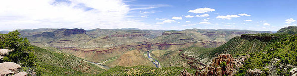 Douglas Taylor - SALT RIVER CANYON PANORAMA