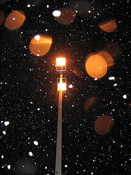 Sandy Tolman - Snow at Night - 1776