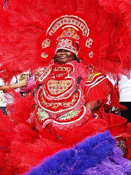 Jerome Holmes - Mardi Gras Indians