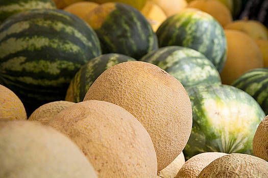 Dina Calvarese - assortment of melons