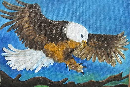 Xafira Mendonsa - Bald Head Eagle