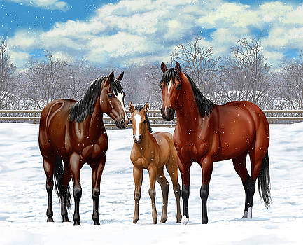 Crista Forest - Bay Horses In Winter Pasture