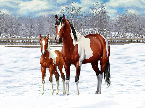 Crista Forest - Bay Pinto Mare and Foal In Snow