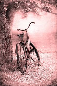 Sophie Vigneault - Bicycle in Pink