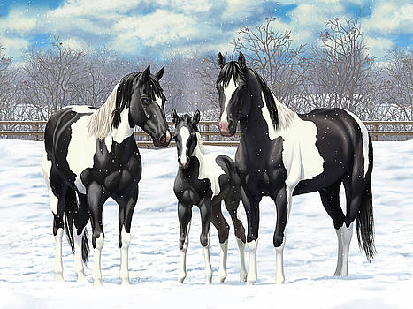 Crista Forest - Black Paint Horses In Winter Pasture
