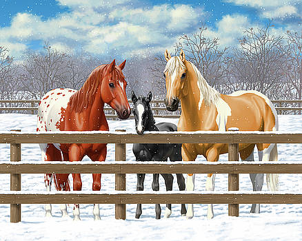 Crista Forest - Chestnut Appaloosa Palomino Pinto Black Foal Horses In Snow