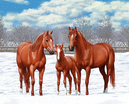 Crista Forest - Chestnut Horses In Winter Pasture