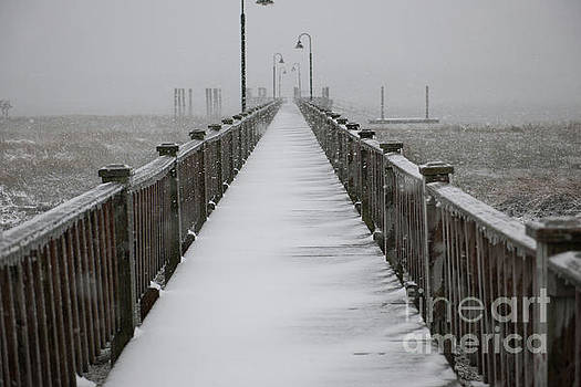 Dale Powell - Dock Covered in Snow