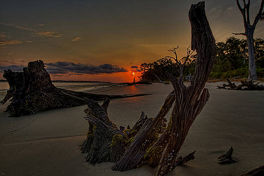 Jason Blalock - Driftwood Beach HDR 3