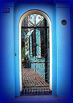 Susanne Van Hulst - House Door 4 in Charleston SC