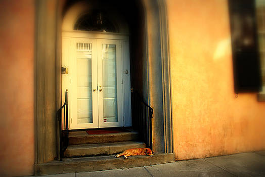 Susanne Van Hulst - Lazy Afternoon at Kings Street in Charleston SC