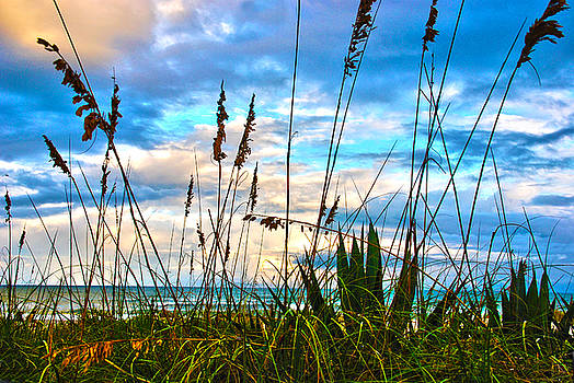 Susanne Van Hulst - November Day at the Beach in Florida