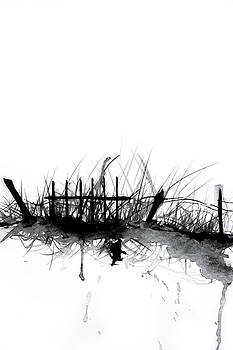 ZileArt  - Old Fence In Grass