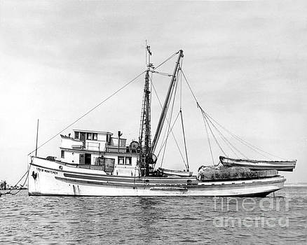 California Views Mr Pat Hathaway Archives - Purse Seiner City of Montey at anchor in Monterey harbor circa 1938