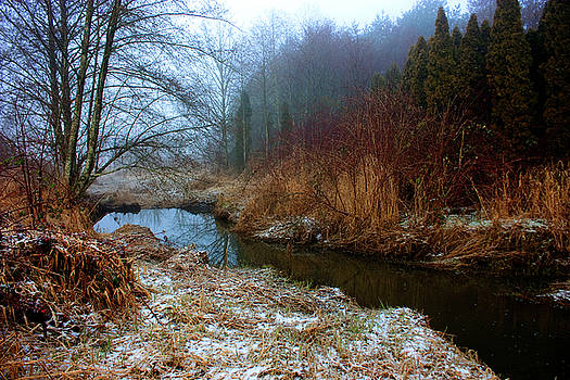 Barbara  White - Winter Stream
