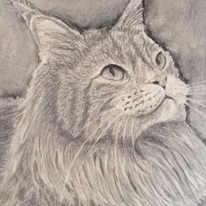 CATS WE LOVE CATS Art Competition