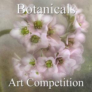 Call For Entries  Botanical And Floral Online Art Competition